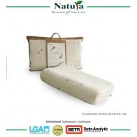 Natura Bio Spring Max Pillow